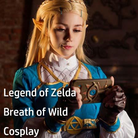 Legend of Zelda Breath of Wild Cosplay Costumes